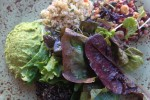 Happy Vegan Salad from Tender Greens