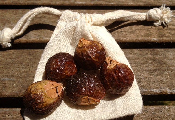 Soap Nuts with Bag