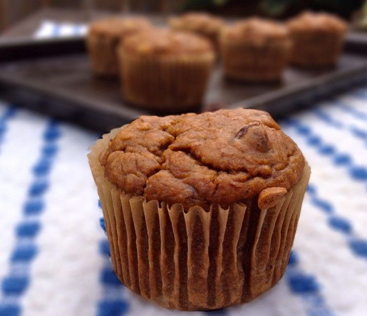 Two Vegan Pumpkin Banana Chocolate Chip Muffins